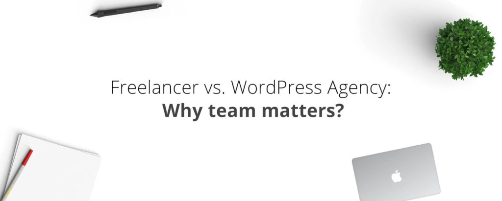 Freelancer vs WordPress Agency