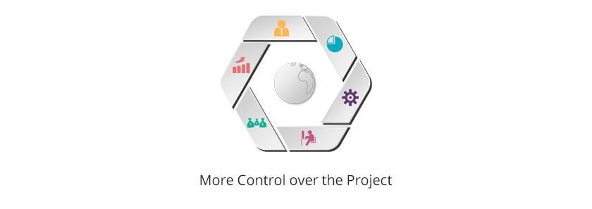 control over the project