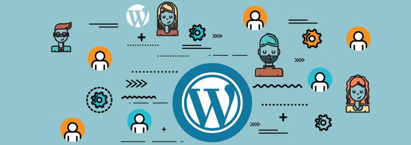 More WordPress User