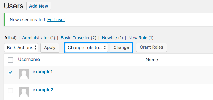 WordPress Custom User Roles Role & Capabilities